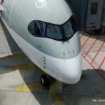 A350 Nose